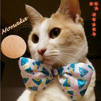摩那卡的日本玩樂手札