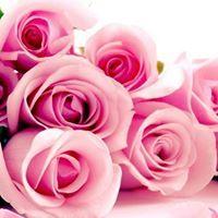Rose Yang