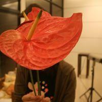 Wan Ting Liao