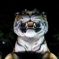 Tiger Chang