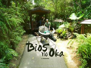 Bios之丘