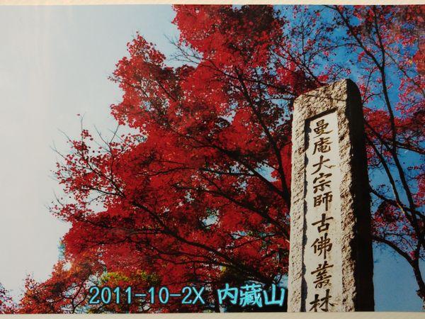 釜山/大邱 的常見問題 <<秋季天氣、紅葉與銀杏>>