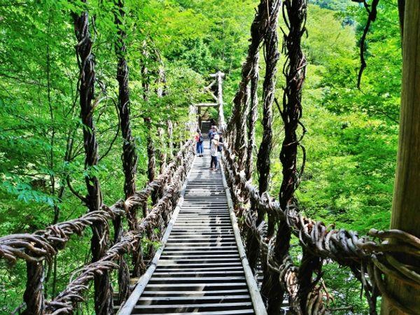 拍照打卡景點不藏私!一次介紹日本人最愛的5座特色橋!