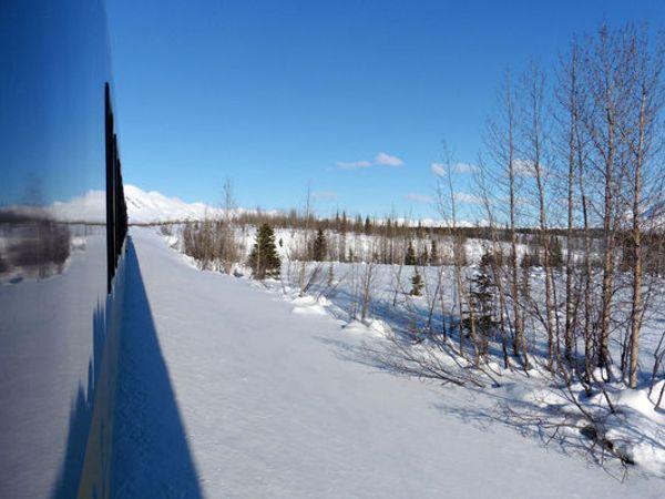 美國*阿拉斯加|前往極光之都的北極特快車~阿拉斯加鐵路
