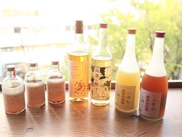 辣椒梅酒?柚子梅酒?日本酒專家推薦5款梅酒–從正統派到創新款一次告訴你!