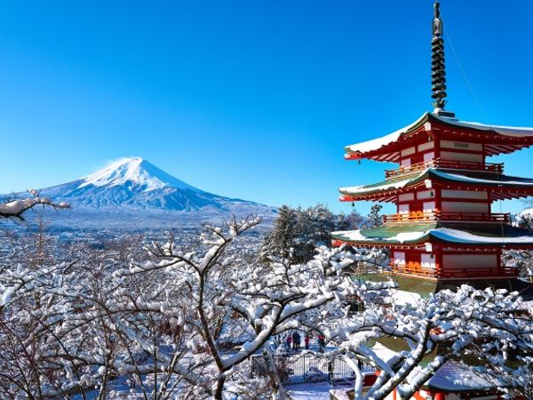 疫情之後!東京近郊又多了什麼一日遊必去景點呢? 懶人包雙手奉上!
