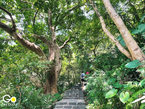 觀音山硬漢嶺步道