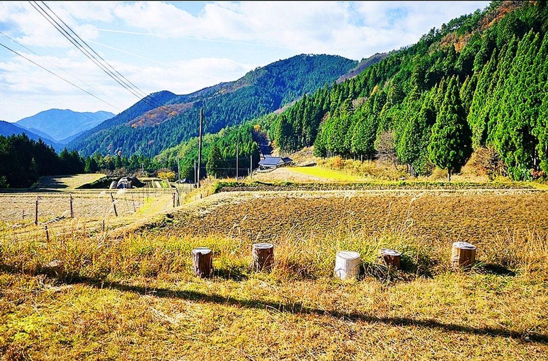 西粟倉 村